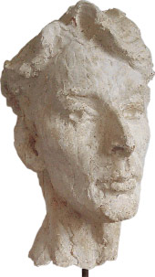 david-plaster