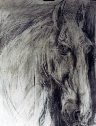 Horse-500